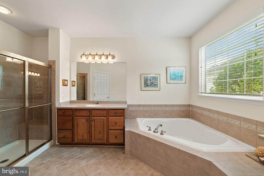 Soaking tub and stand alone shower - 3959 GREAT HARVEST CT, DUMFRIES
