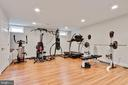 Lower level exercise room - 802 SE TINA DR SE, LEESBURG