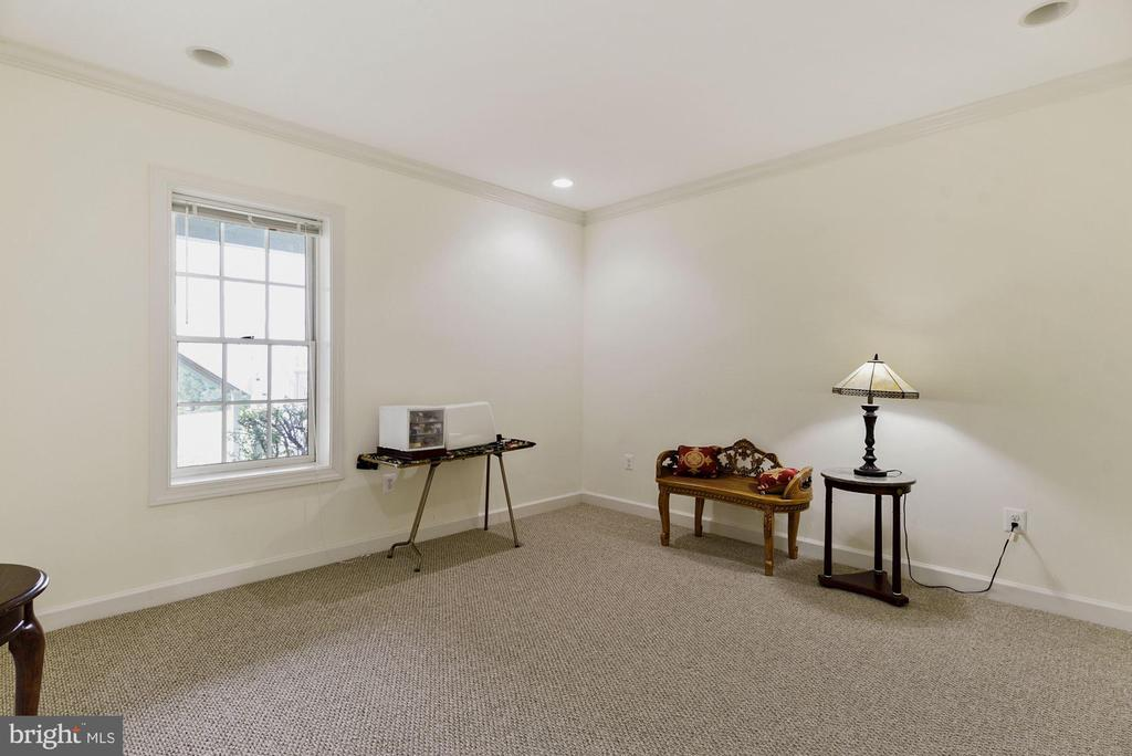 Lower level comes with bedroom #5 - 22340 ESSEX VIEW DR, GAITHERSBURG