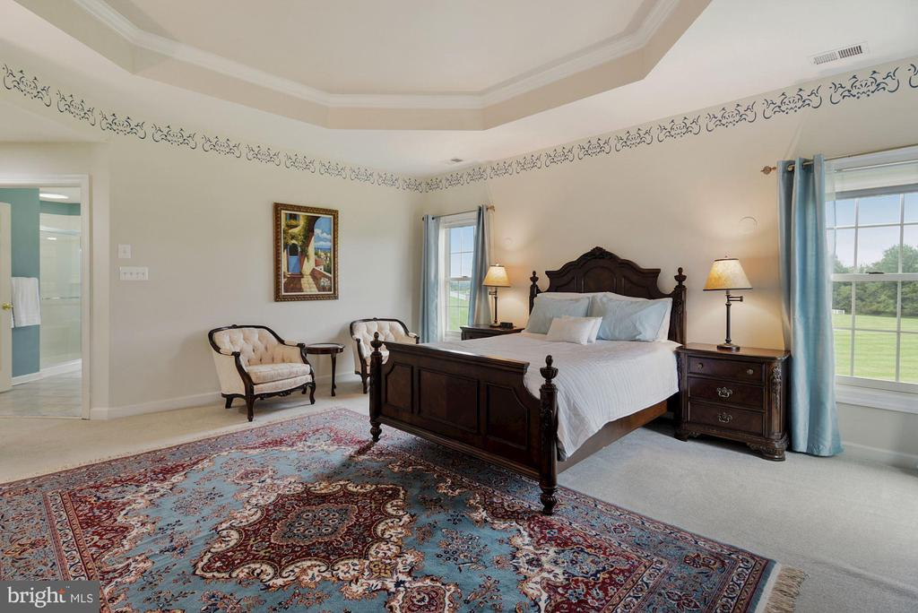 Master bedroom with tray ceiling - 22340 ESSEX VIEW DR, GAITHERSBURG