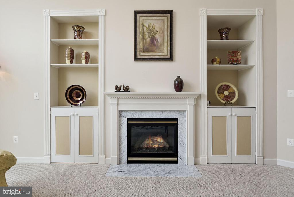 Custom built-ins and gas fireplace in family room - 22340 ESSEX VIEW DR, GAITHERSBURG