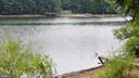Fishing, canoeing, kayaking - 113 REDHAVEN CT, THURMONT