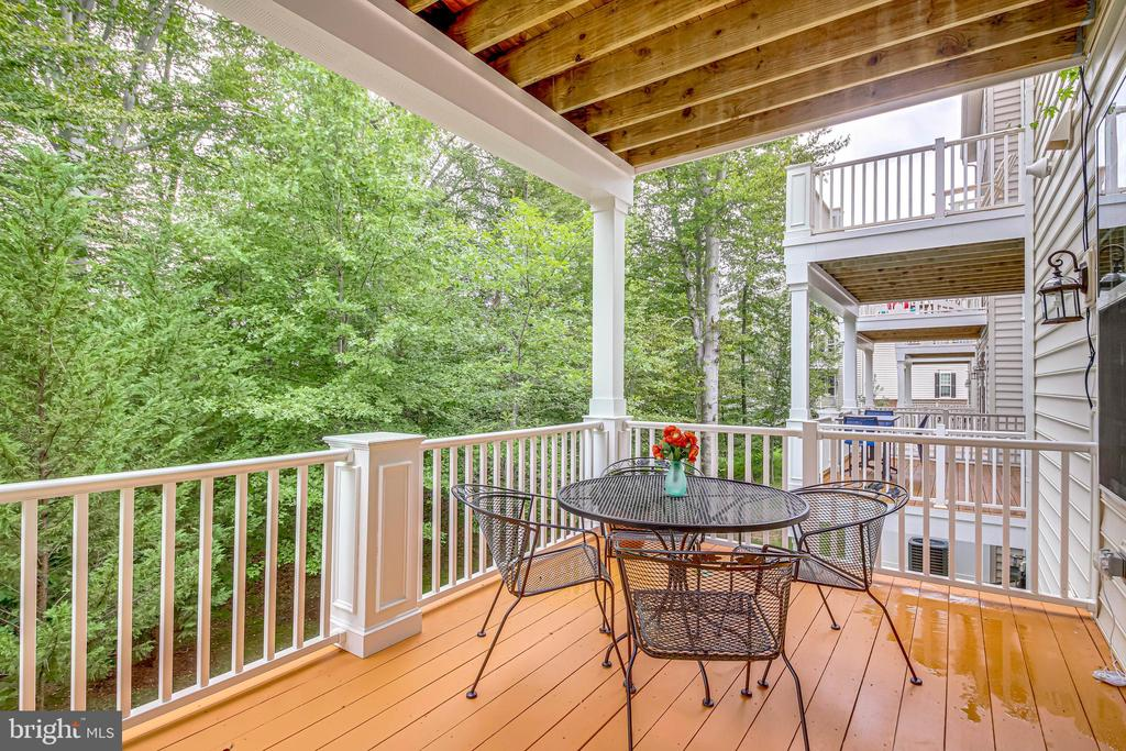 Lower level Family Room Deck - 20287 CENTER BROOK SQ, STERLING