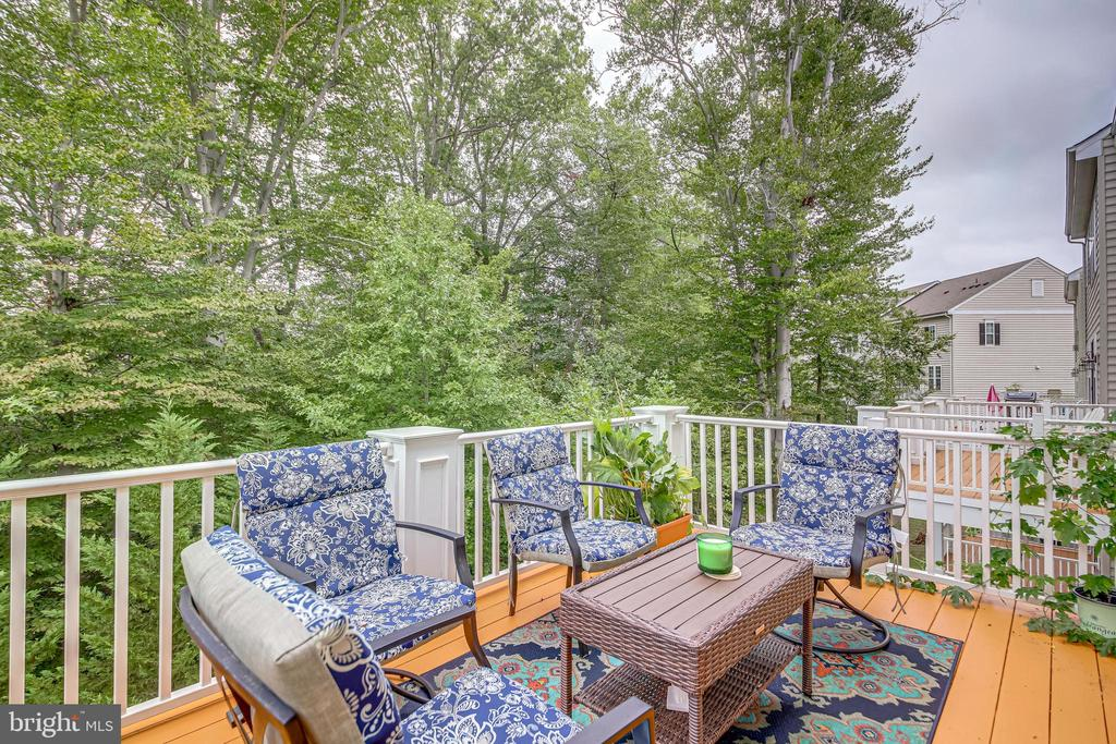 1 of 3 decks!  Who loves to dine outdoors? - 20287 CENTER BROOK SQ, STERLING