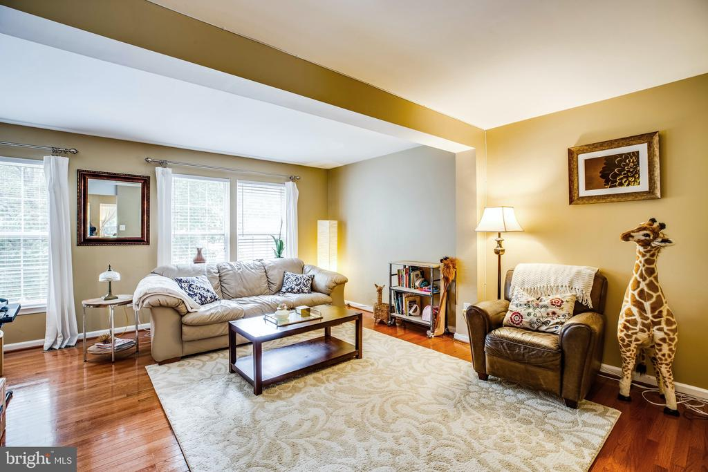 Sun streams in the front windows to Living Room - 10003 GRASS MARKET CT, FREDERICKSBURG