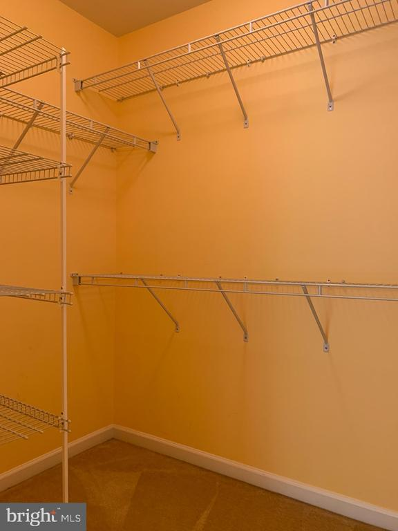 Walk in closet 1 - 25575 AMERICA SQ, CHANTILLY