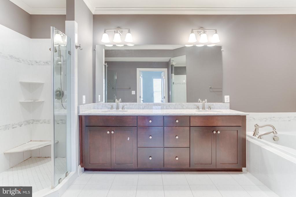 Primary Bathroom - 19347 NEWTON PASS SQ, LEESBURG