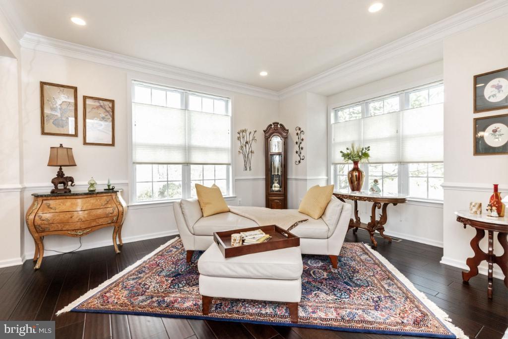 Living room - 24083 AUDUBON TRAIL DR, ALDIE