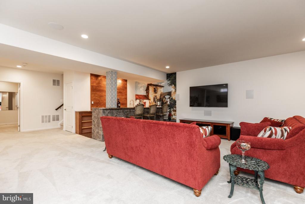 Lower level lounge area - 24083 AUDUBON TRAIL DR, ALDIE
