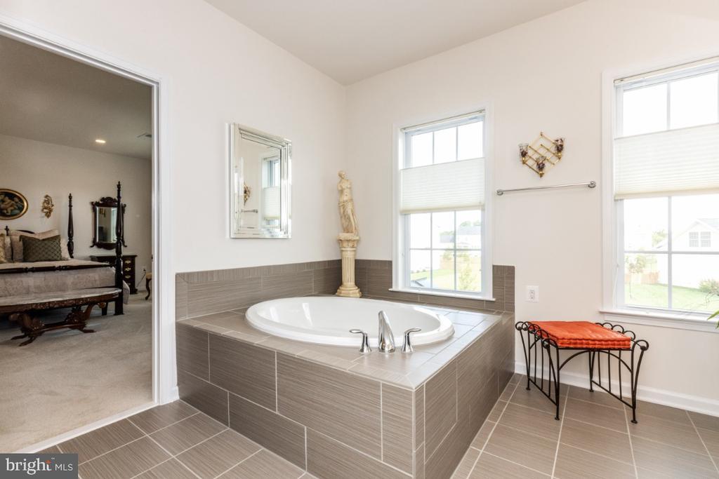2bd floor master ensuite bath - 24083 AUDUBON TRAIL DR, ALDIE