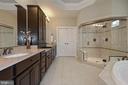 Separate shower and soaking tub - 20669 PERENNIAL LN, ASHBURN