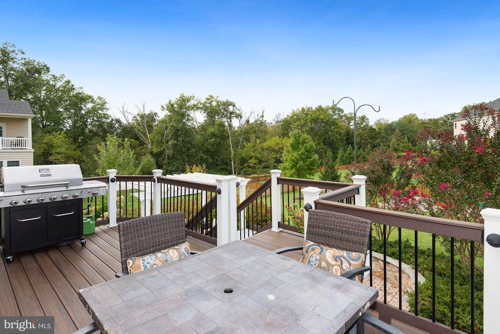 Deck overlooks beautifully landscaped yard - 20669 PERENNIAL LN, ASHBURN