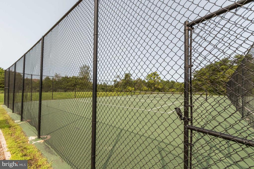 Community Tennis - 13730 SENEA DR, GAINESVILLE
