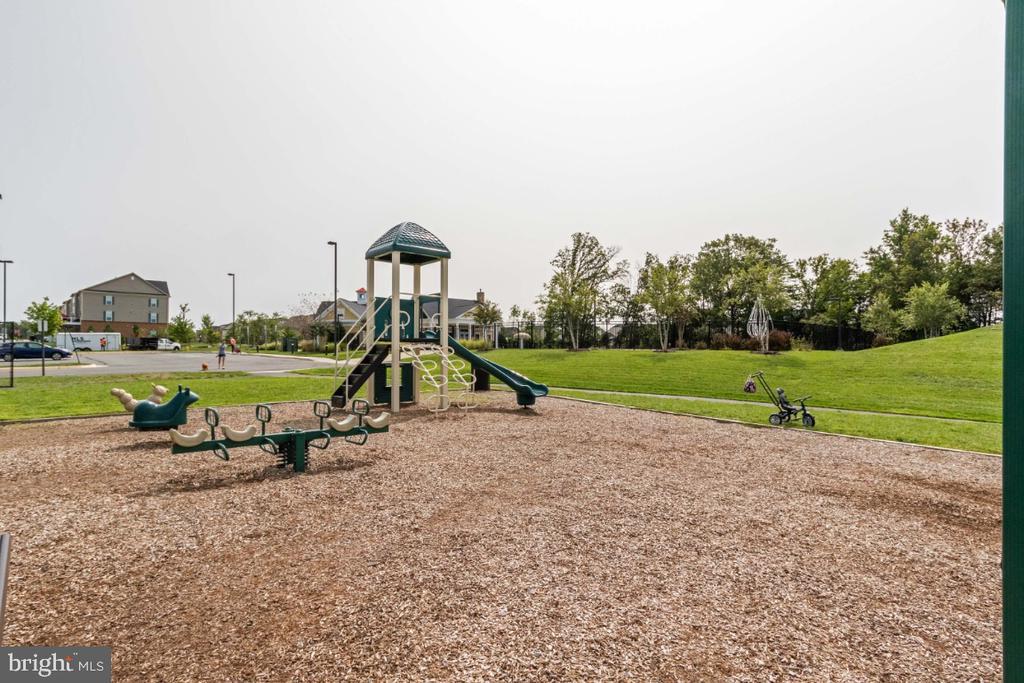 Community Tot Lot and 5 miles of walking trails. - 13730 SENEA DR, GAINESVILLE