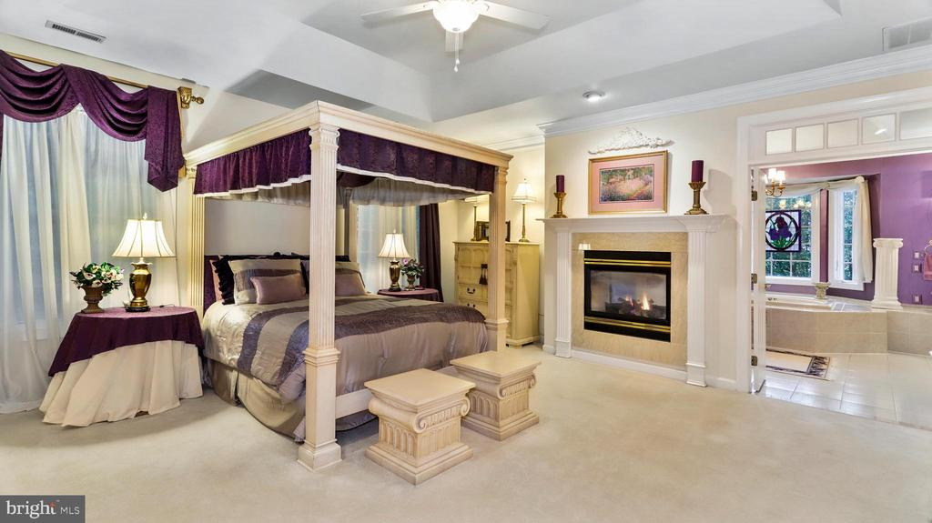 Master Suite-Tray-openness, Recessed areas, FP#3. - 1414 WYNHURST LN, VIENNA