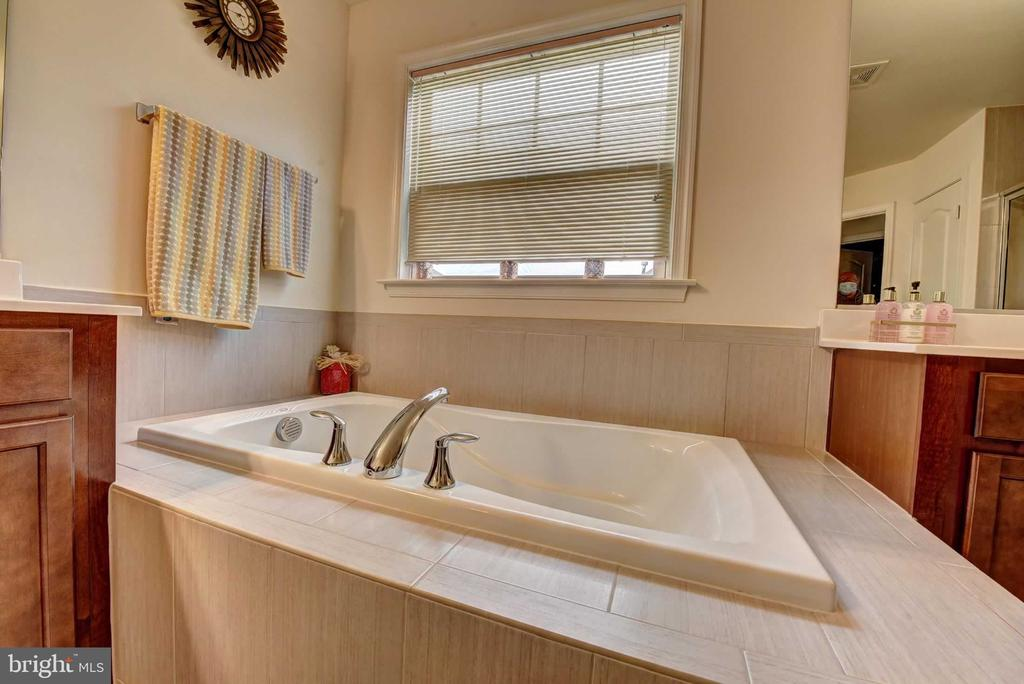 Master Bath Soak Tub - 42340 ABNEY WOOD DR, CHANTILLY