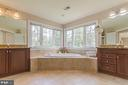 Master Bathroom or is it a day spa? - 43829 RIVERPOINT DR, LEESBURG