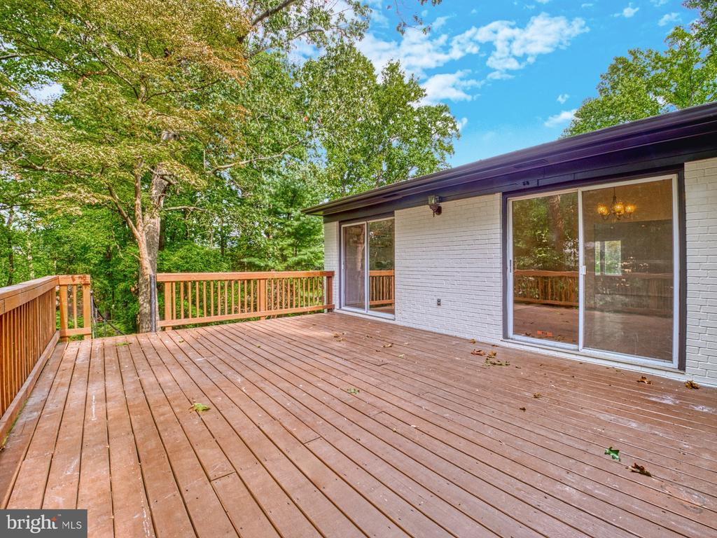 PRIVATE, SECLUDED OASIS - 1566 DRANESVILLE RD, HERNDON