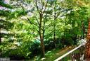 GREEN EXPOSURE FROM BALCONY - 1835 N UHLE ST #1, ARLINGTON