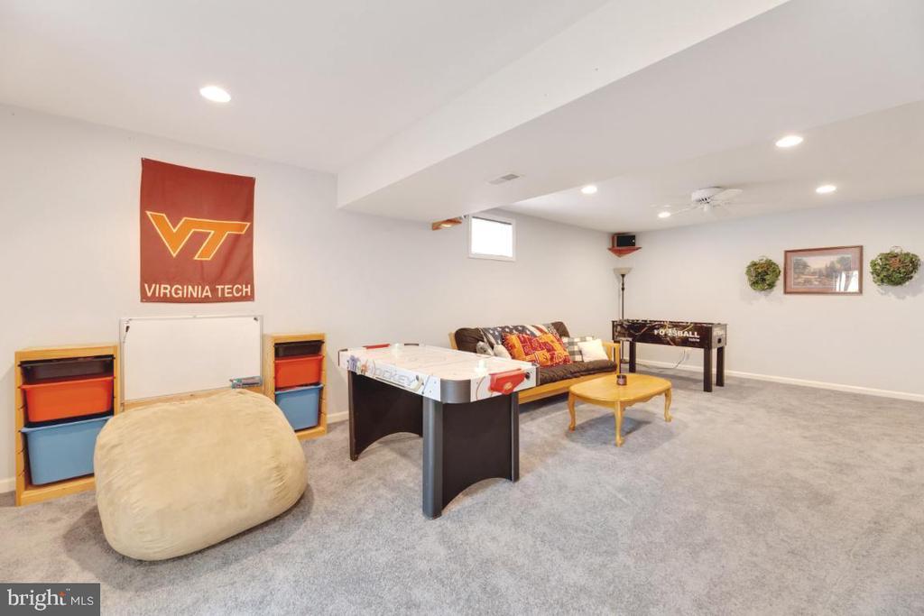 Rec Room area - 42870 AUTUMN HARVEST CT, BROADLANDS