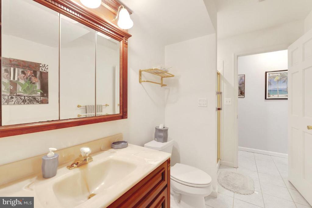 Lower Level full bath - 42870 AUTUMN HARVEST CT, BROADLANDS