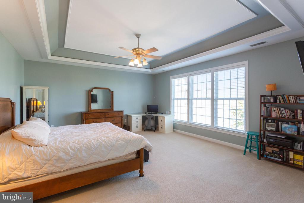 Amazing Owner's bedroom with tray ceiling - 19198 SKINNER SQ, LEESBURG