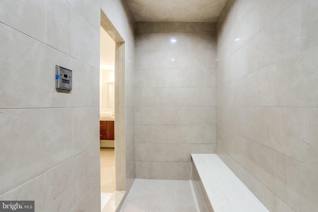 Steam shower renovated in 2019 - 2124 POLO POINTE DR, VIENNA