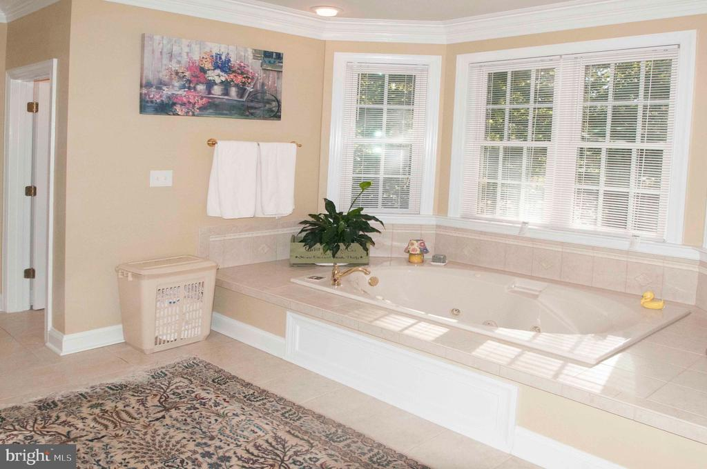 Master Bath Tub-Main Level - 11918 SANDY HILL CT, SPOTSYLVANIA