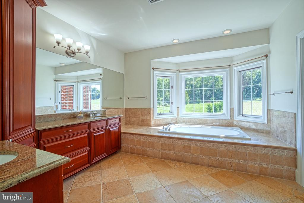 Master Bath - 40163 BEACON HILL DR, LEESBURG