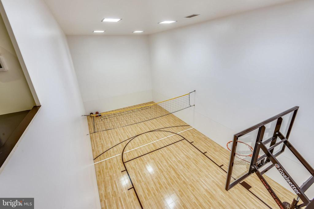 Sport court on lower level - 40850 ROBIN CIR, LEESBURG