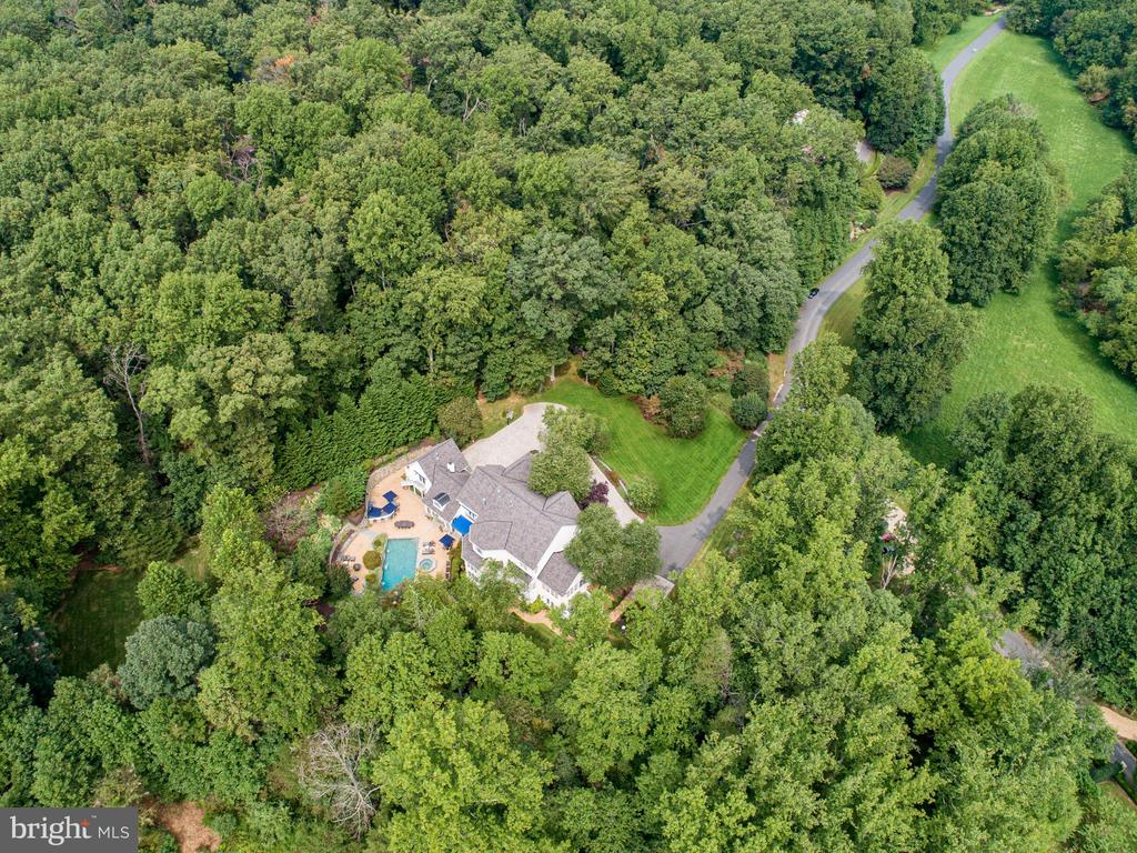 Enveloped by trees on all sides & stunning inside! - 2124 POLO POINTE DR, VIENNA