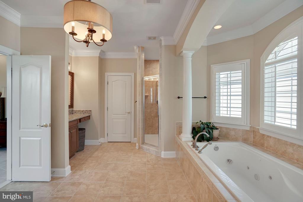 Master Bathroom - 44220 RIVERPOINT DR, LEESBURG