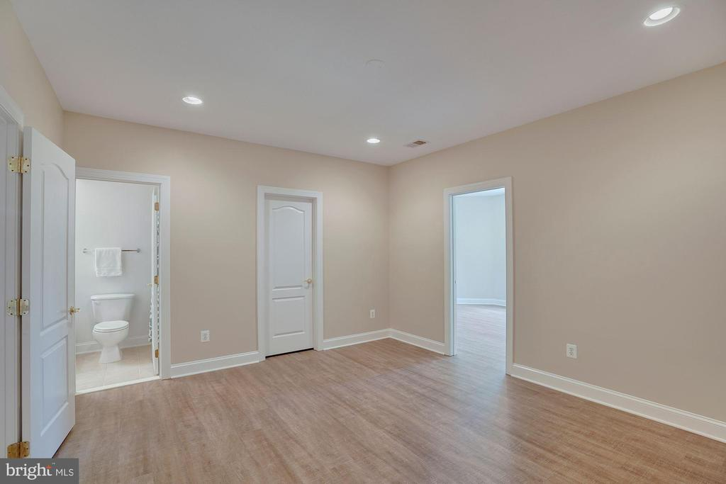 Lower Level 6th Bedroom - 44220 RIVERPOINT DR, LEESBURG