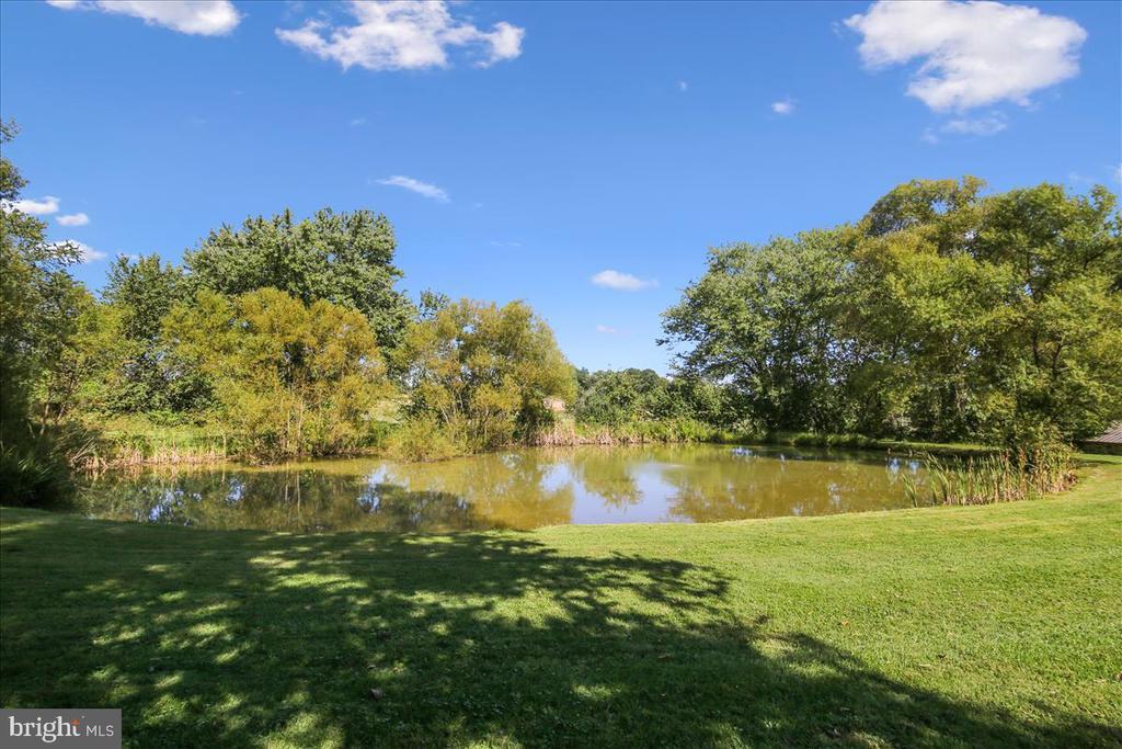 Pond behind guest house. - 39860 LOVETTSVILLE RD, LOVETTSVILLE