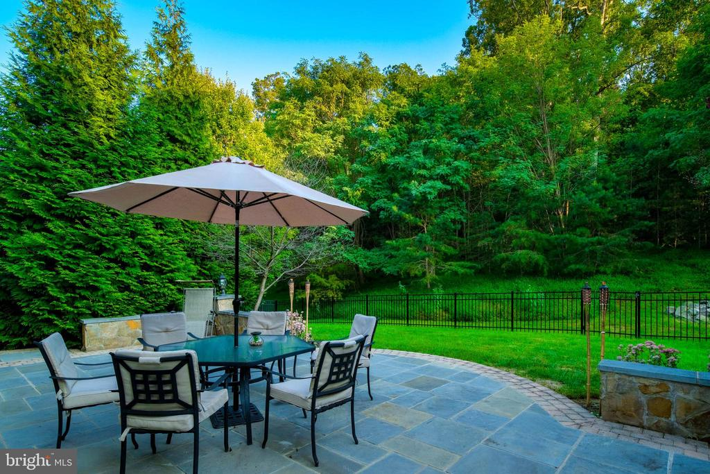 Stone Patio - 43945 RIVERPOINT DR, LEESBURG