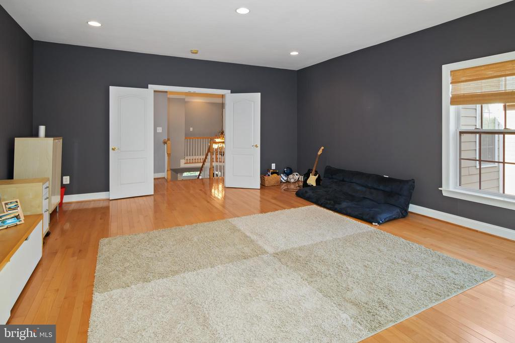 2nd Floor Family Room/Play Room - 43945 RIVERPOINT DR, LEESBURG