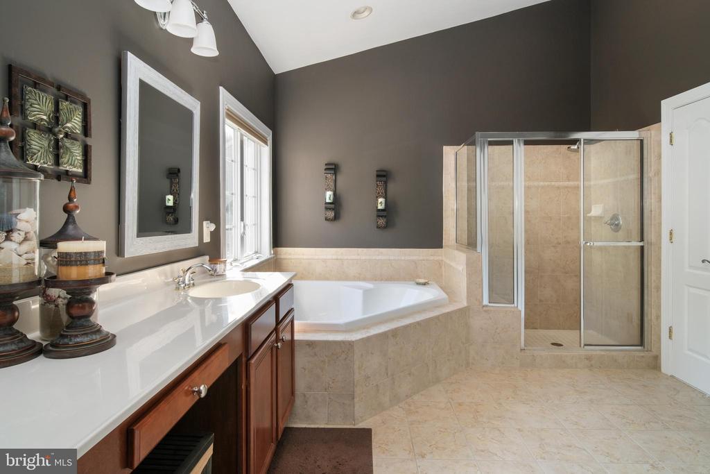 Primary Bathroom - 43945 RIVERPOINT DR, LEESBURG