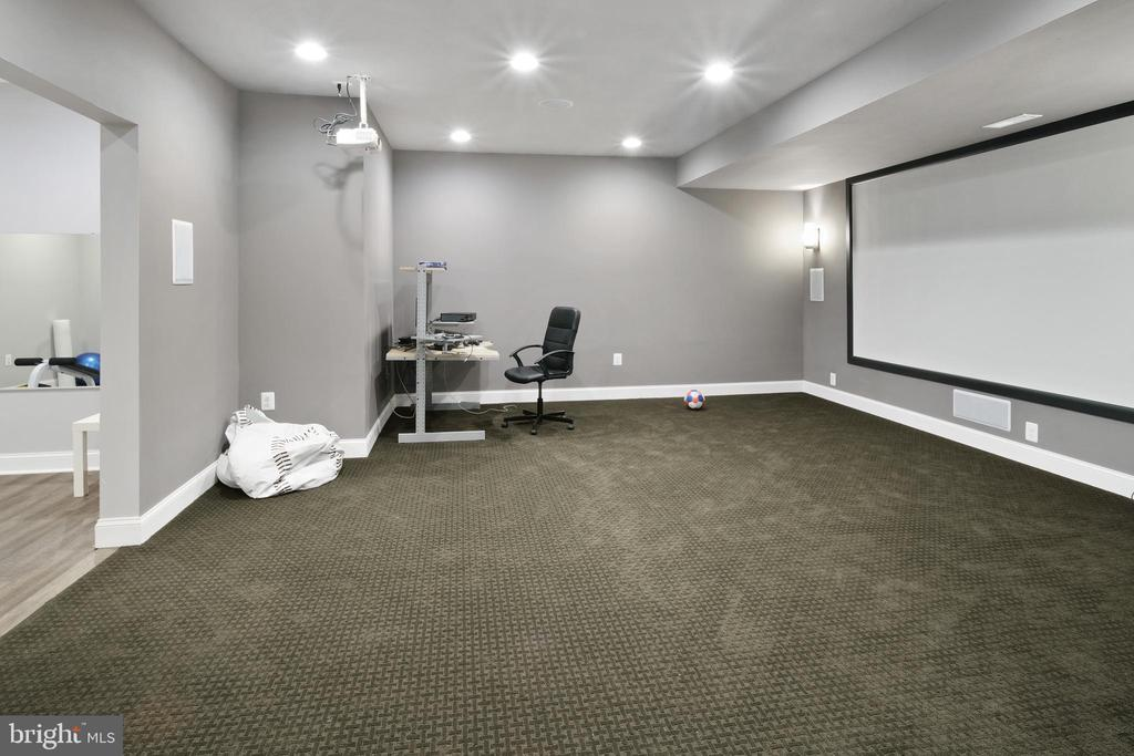 Theater Room - 43945 RIVERPOINT DR, LEESBURG