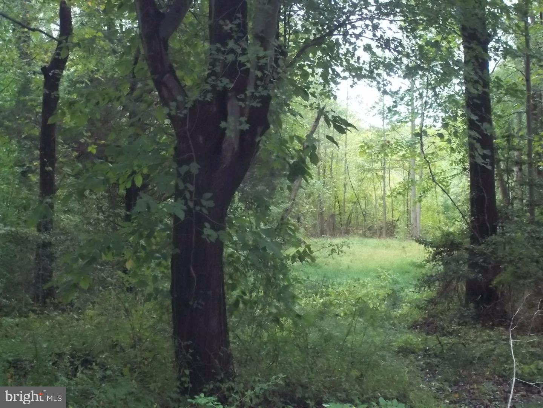Οικόπεδο για την Πώληση στο Elk Township, Νιου Τζερσεϋ 08028 Ηνωμένες Πολιτείες