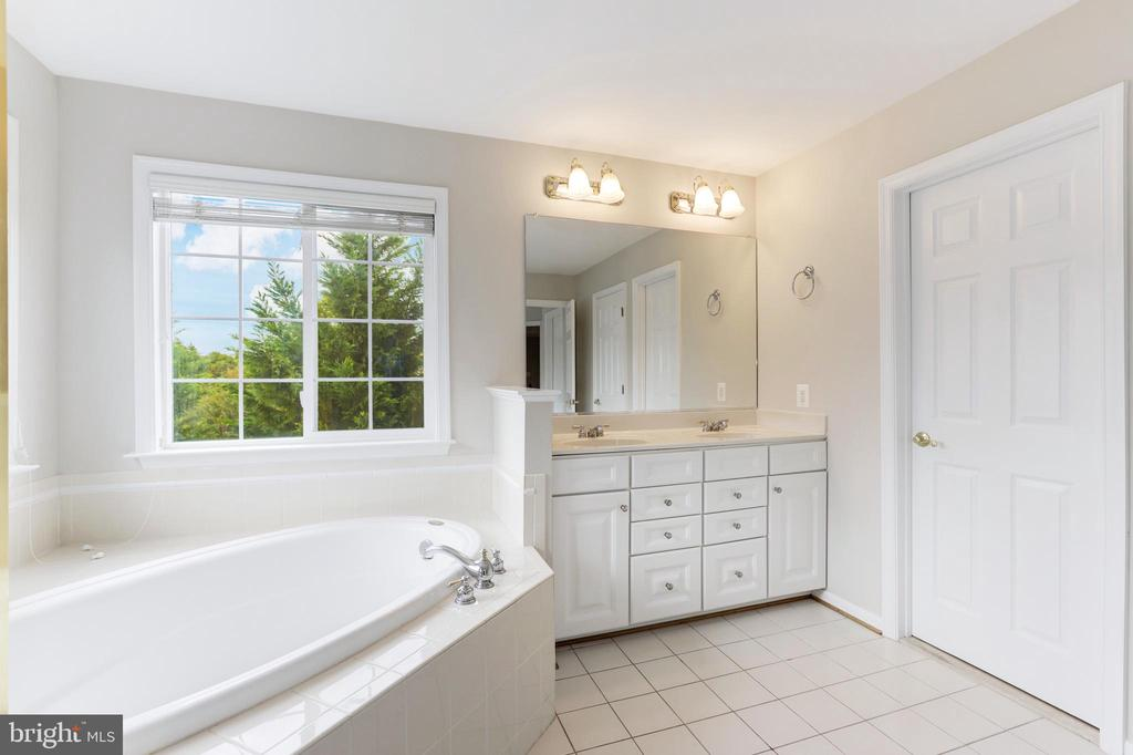 Owner's Bath - 22151 WINTER LAKE CT, ASHBURN