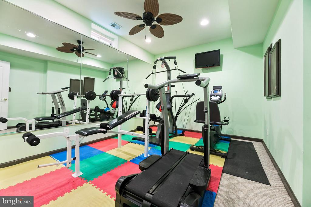 Gym - 22767 SWEET ANDREA DR, BRAMBLETON