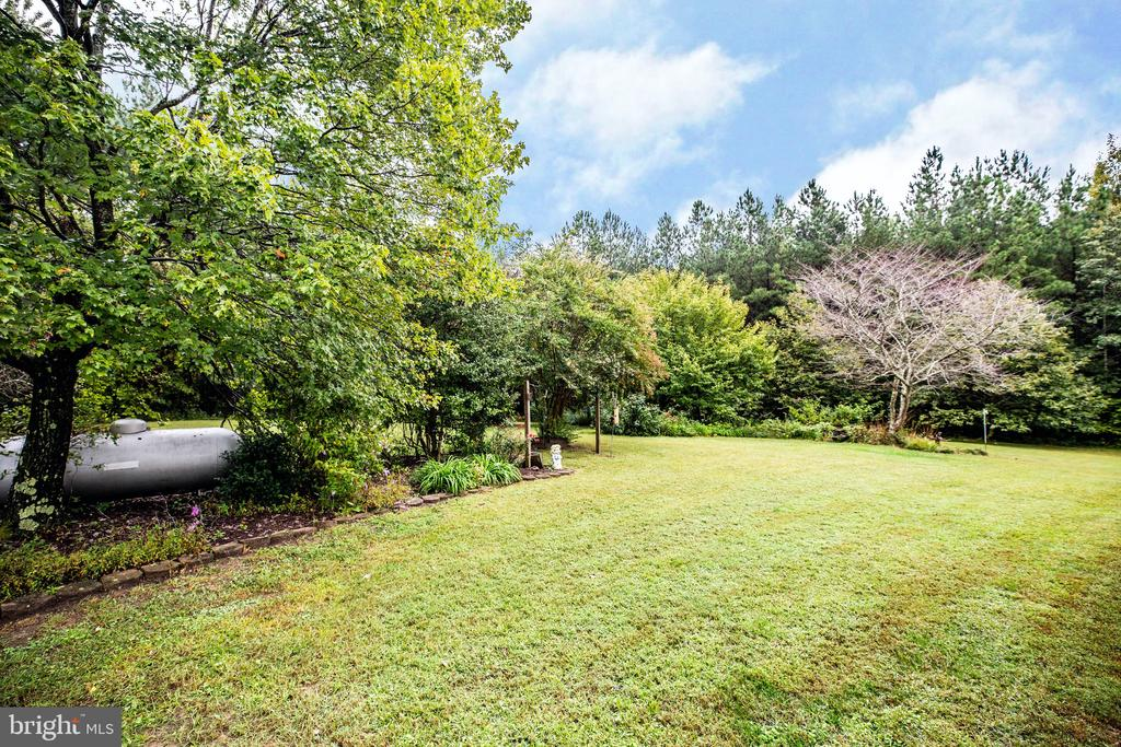 Flowering trees offer year round glory - 6300 MARYE RD, WOODFORD
