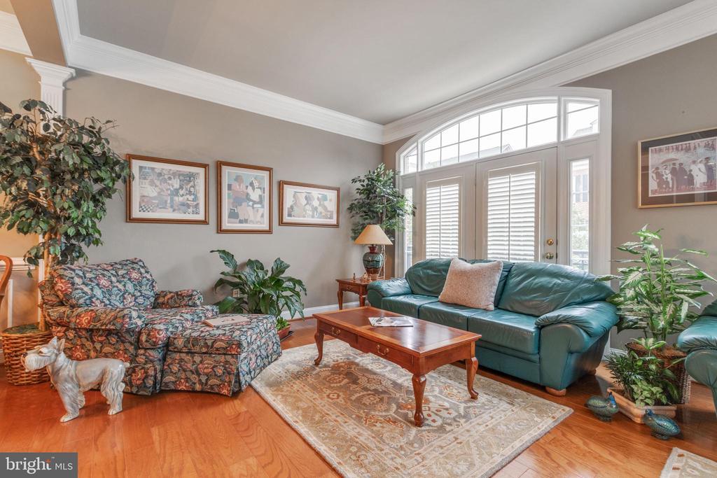 Large living room - 4372 PATRIOT PARK CT, FAIRFAX