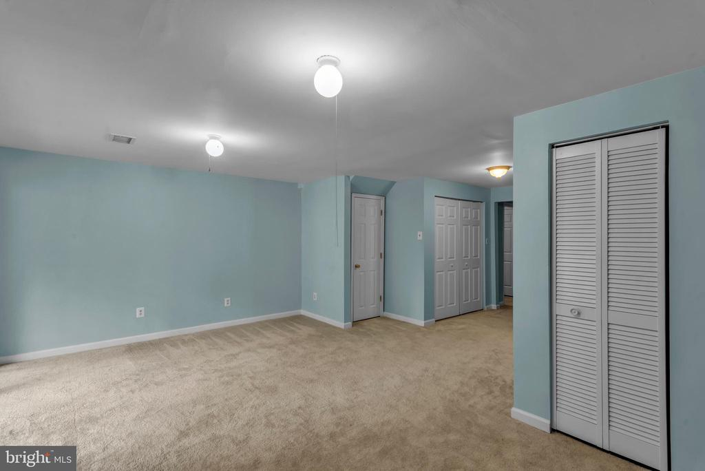 Spacious Finished Basement with Lots of Storage! - 13536 DARTER CT, CLIFTON