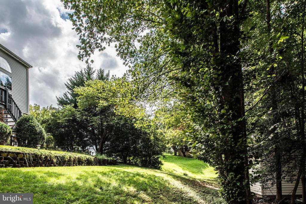 You will love your new backyard - 5 JAMESTOWN CT, STAFFORD