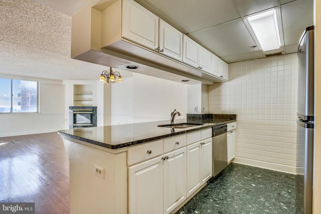 Granite counters in the kitchen - 1276 N WAYNE ST #805, ARLINGTON