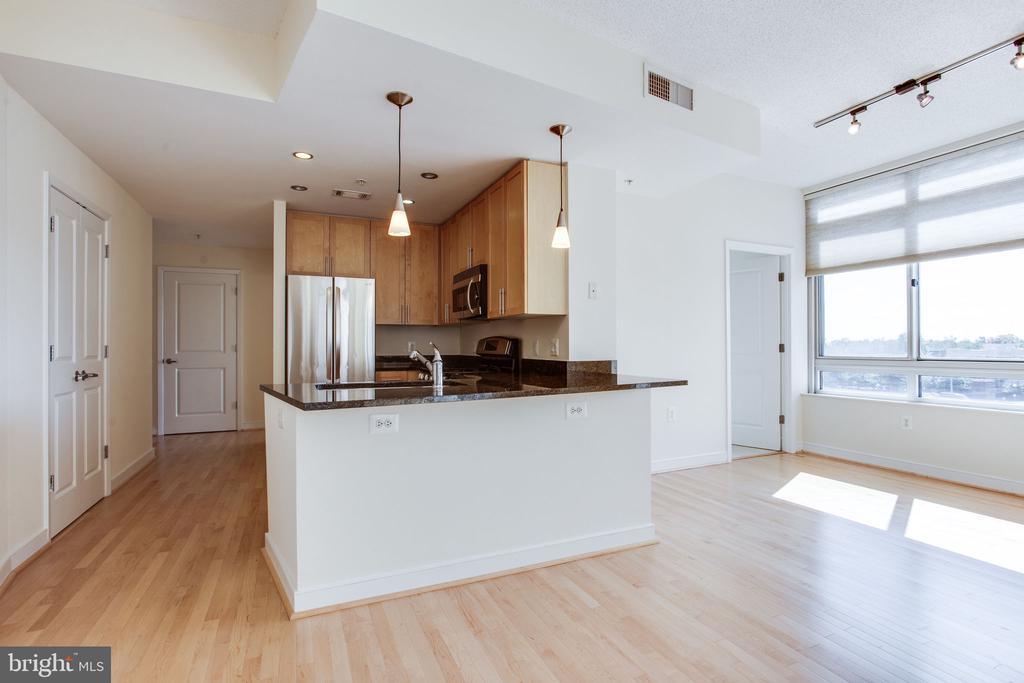 Kitchen  w breakfast bar open to the lving space. - 820 N POLLARD ST #504, ARLINGTON