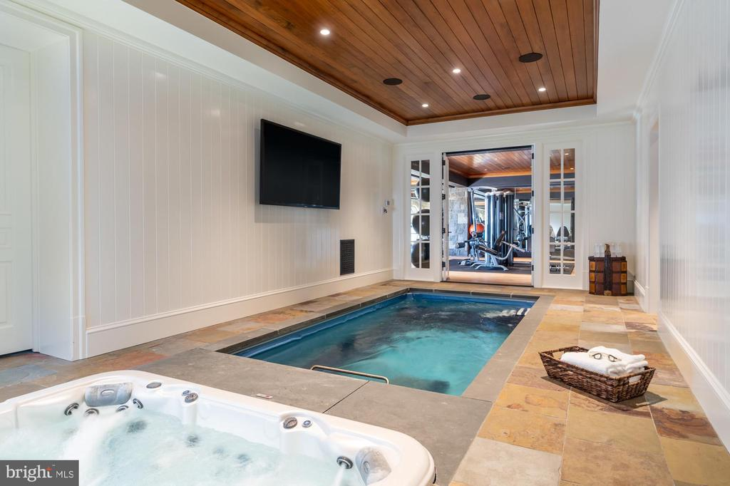 Private spa, resistance pool, sauna and steam room - 7979 E BOULEVARD DR, ALEXANDRIA