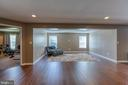 Finished basement- family room - 116 CHRISWOOD LN, STAFFORD