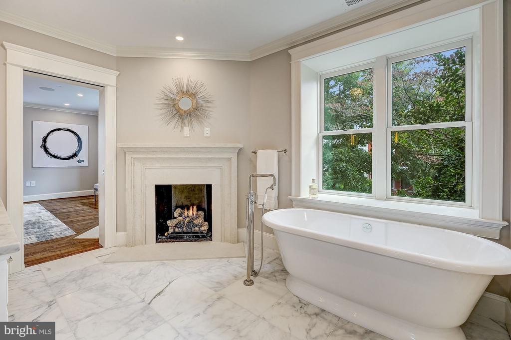 Fireplace and Freestanding Victoria + Albert Tub - 216 8TH ST NE #1, WASHINGTON